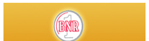 BNR Capital Services Pvt.Ltd.